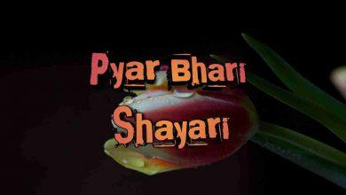 Photo of Pyar Bhari Shayari