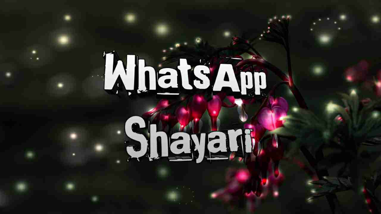 Photo of WhatsApp shayari