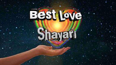 Photo of Best Love Shayari