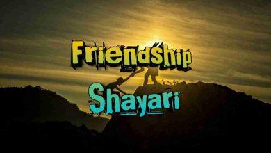 Photo of Friendship shayari