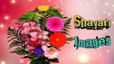 Photo of Shayari Image