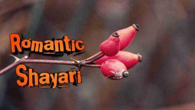 Photo of Romantic Shayari