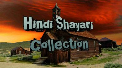 Hindi Shayari Collection