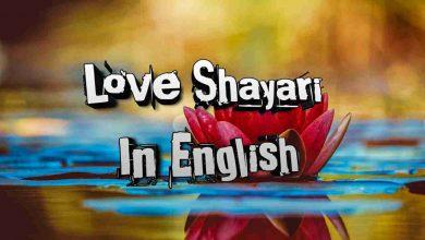 Photo of Love Shayari In English