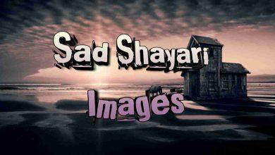 Photo of Sad Shayari With Images