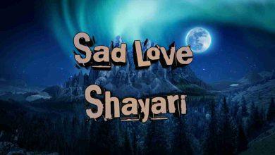 Photo of Sad Love Shayari