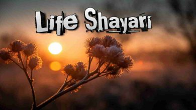 Photo of Life Shayari
