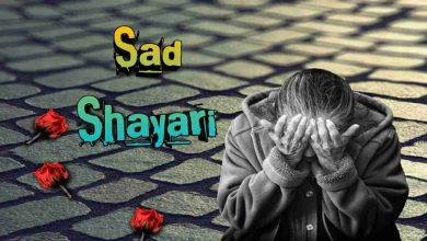 Photo of Sad Shayari