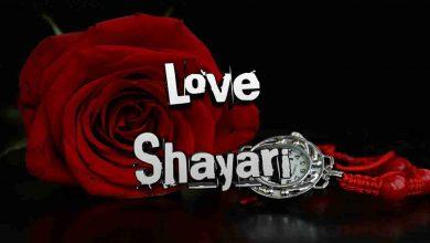 Photo of Love Shayari