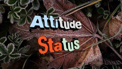 Photo of Attitude Status In Hindi